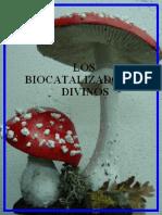 Los-biocatalizadores-divinos.pdf