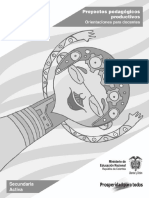 PPP_Orientaciones Docente.pdf