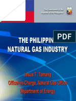 Philippine Natural Gas Industry