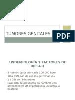 Tumores genitales