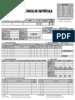 ficha unica de matricula 11.pdf