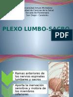 Plexo Lumbosacro (1)Listo