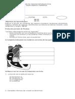 Evaluación 5° ANH Formativa