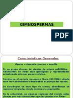 gimnospermas-111113175157-phpapp02.ppt