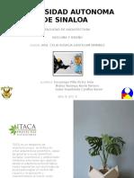 Universidad Autonoma de Sinaloa