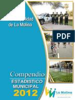 Compendio Estadistico Municipal 2012