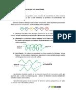 B025.Proteinas_niveles_estructurales.pdf