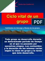 4. Ciclo Vital
