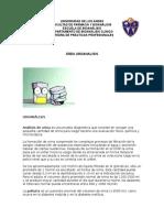 UROANÁLISIS.docx