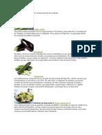 Cómo Prolongar El Tiempo de Conservación de Los Alimentos