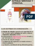 Tema 18. Sistema Nervioso y Endocrino