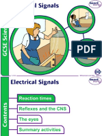 5. Electrical Signals v2.0