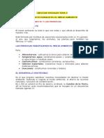 Ciencias Sociales Tema 5