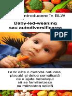 O mica introducere in BLW.pdf
