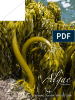 Algae Sample Chapter