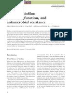 dufour2010.pdf