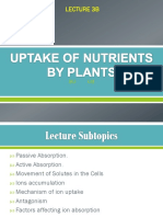 Uptake of Nutrients by Plants