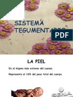 Presentación TEGU