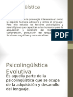Power Point. Psicolinguistica Evolutiva