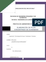LABORATORIO N°2 PULPA DE GUANABANA