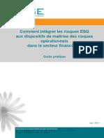 2012 ORSE - Guide Pratique Sur Les RisquesOpérationnels ESG Secteur Financier v Au 07062012 (1)