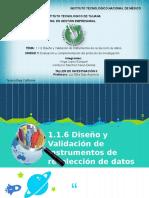1.1.6 Diseño y Validacion de Instrumentos de Recoleccion de Datos TALLER INV.ii