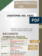Anatomia Del Oido Finall2