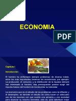 Economia General 01-2014