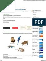 Reino Animal_ Vertebrados e Invertebrados