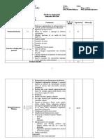 Tehnologia informatiei si a comunicatiilor_IX.docx