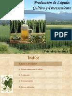 3. Producción y Procesamiento de Lúpulo en Argentina H. Testa