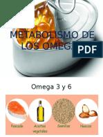 Metabolismo de Los Omegas