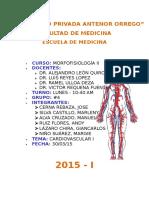 Informe CASO CLINICO 1