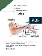 Oído1