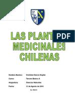 Plantas medicinales 120316