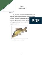 BAB 2  ikan mas.pdf