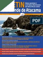 Boletín-Atacama-Nº-2