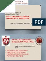 [Lab] Patología II - AP Genital Masculino