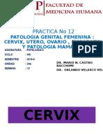 [Lab] Patología II - AP Genital Femenino