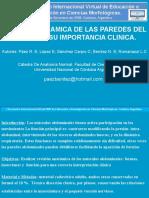 6. laparatomia CE.ppt