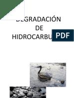 Degradación de hidrocarburos 2015