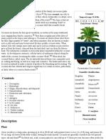 Coconut - Wikipedia