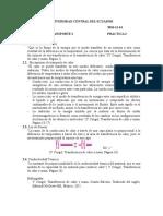 teoria practica 2.docx