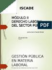 Derecho Laboral Del Sector Público