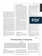 Baudauf The deep roots in eukaryotes.pdf