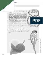 2912532_RD_2609.pdf