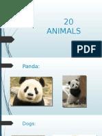 20 Animals