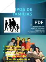 tiposdefamilias-110307144416-phpapp01.pptx