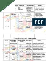 CUADROS RESUMEN DE VITAMINAS.doc
