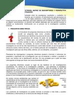 Tema_3_Pregunta_Directrices_Matriz_de_De.pdf